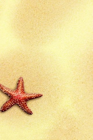 Starfish Home/Lock Screen (IP5)
