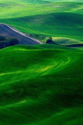 Dreamy-Green-Fields