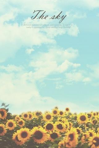 फूल . आकाश