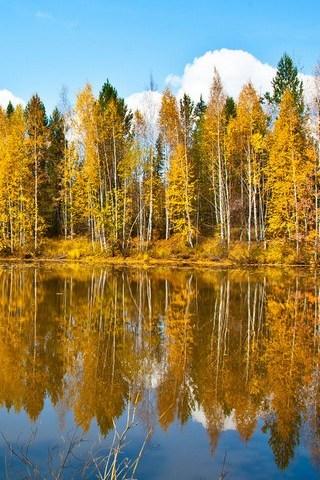 foto de Paysage d'automne Fond d'écran - Télécharger sur votre mobile ...