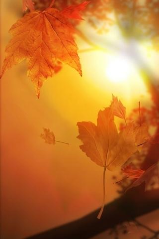 शरद ऋतू