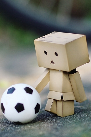 Danbo Football