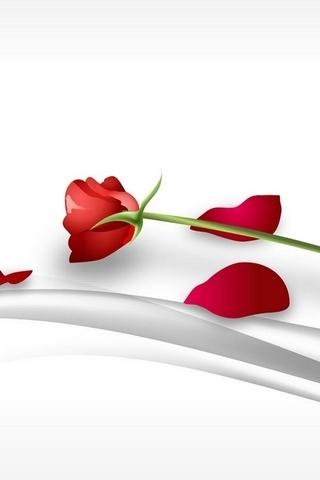 Art Of A Rose