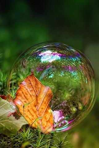 Bubble-i