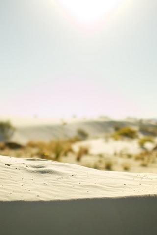 Border Dune