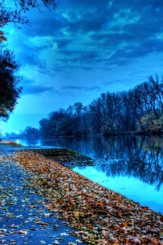 Lake Leaves
