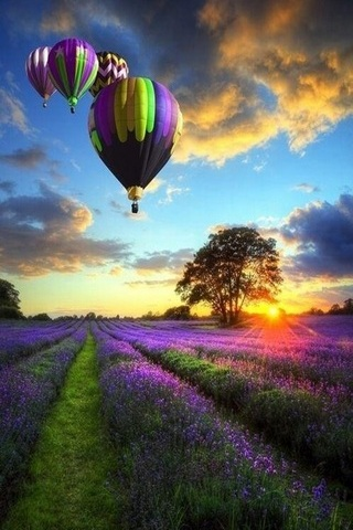 Airballoons Sky