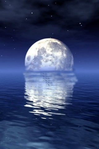 Moonlight Over The Sea
