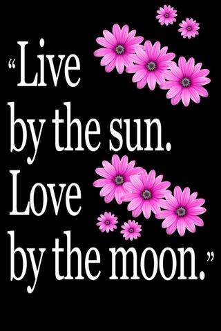 Live Love Words