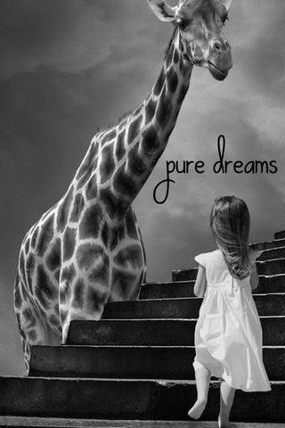 Pure Dreams