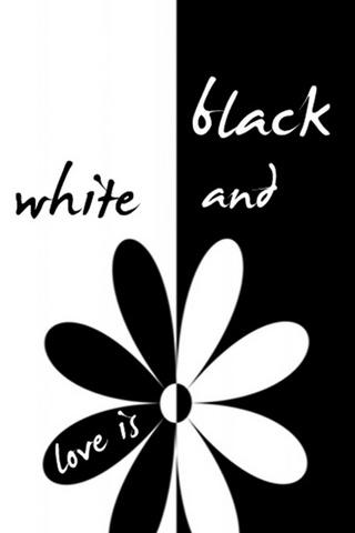 사랑은 흑백이다.