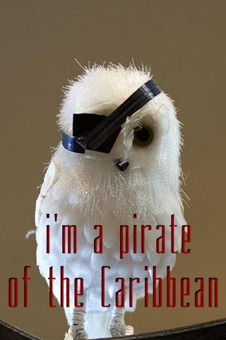Pirate Of Caribbean