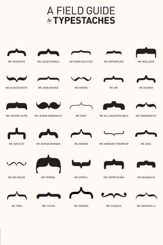 A Field Guide Of Typestaches Mustaches