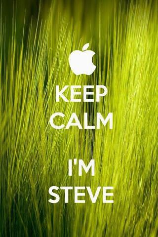 मैं स्टीव हूं