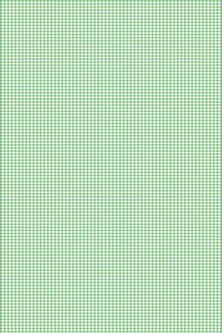Зеленый шаблон проверки