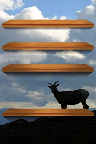 Goat Shelf