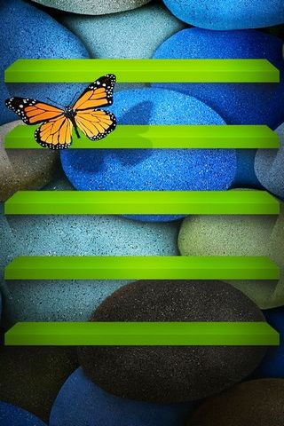 Butterfly Shelf
