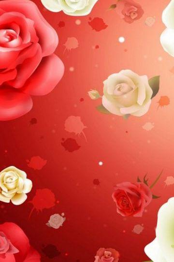 สีแดงและสีแดง ดอกกุหลาบขาว