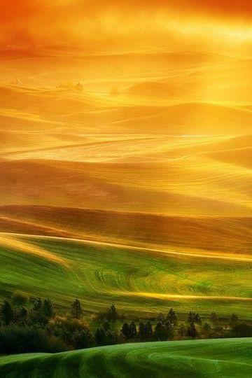 Green-and-orange-hills