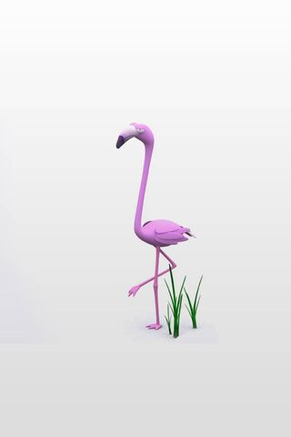 Girlish Flamingo