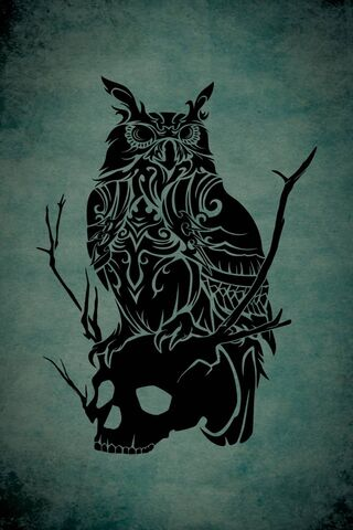 Owl and Skull