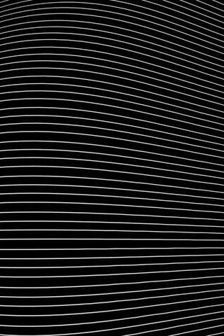 Białe linie