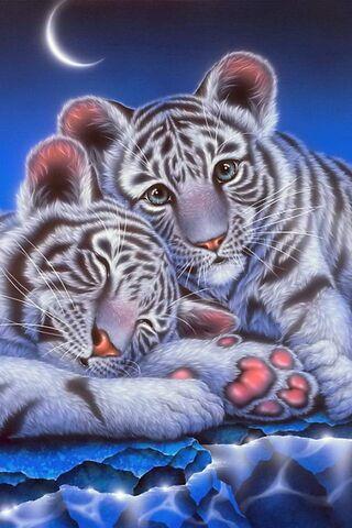 Harimau Bayi