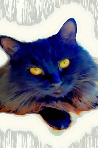 Blue Black Cat