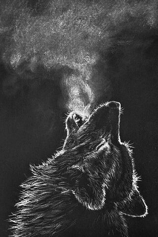 The Cold Wolf