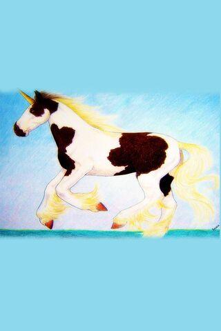 Paint-Pinto Unicorn