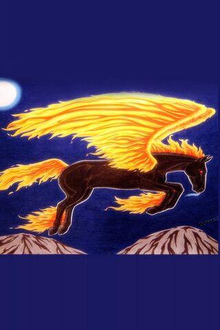 Wild-Fire-Dark Horse