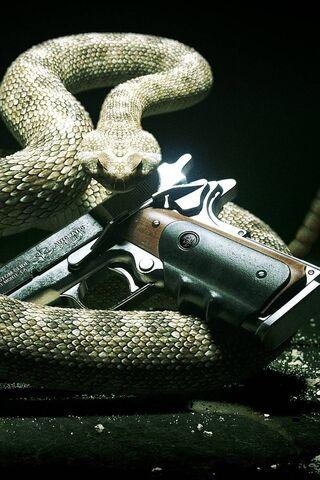 Schlangengewehr