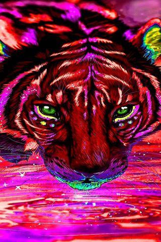 เสือสายรุ้ง