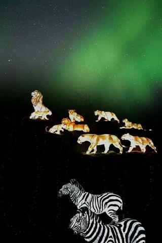 حديقة حيوان الأسد الملك