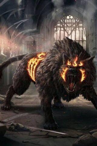 Lobo en fuego