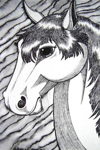 Ink Horse Art