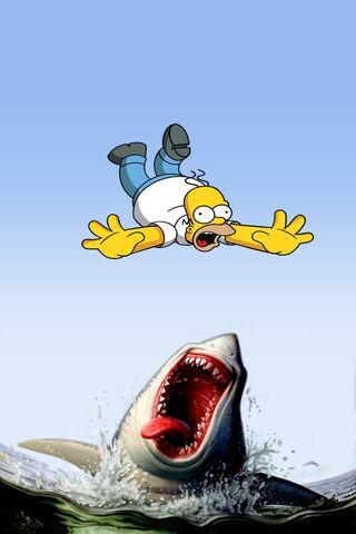 Homer Shark