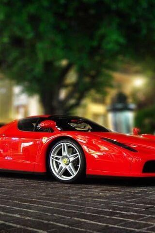 Ferrari Red Sports
