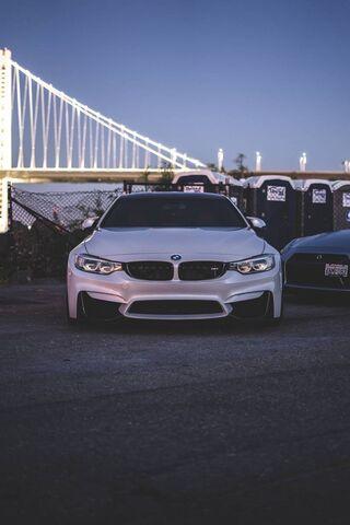 Bmw Car White
