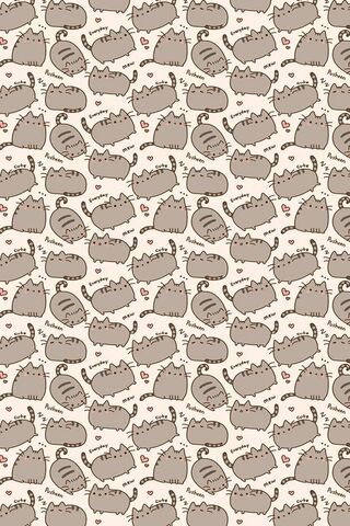 Pusheen jeden Tag