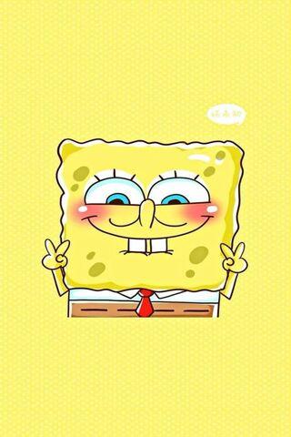 Sponger Bob
