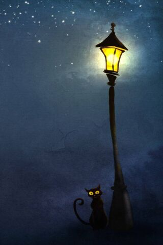 Cat and Lamp Post