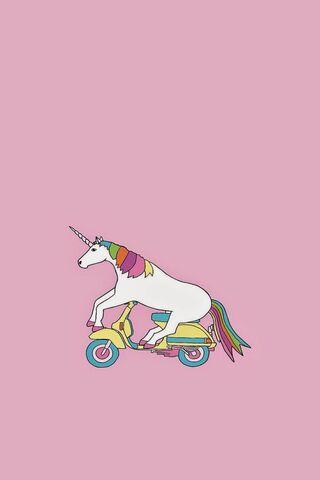 Unicorn On Bicycle