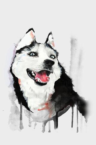 Husky Dog Watercolor