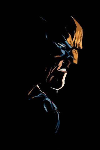 Wolverine Amoled