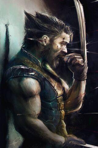 Wolverine Qhd