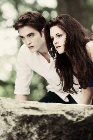 بيلا وإدوارد