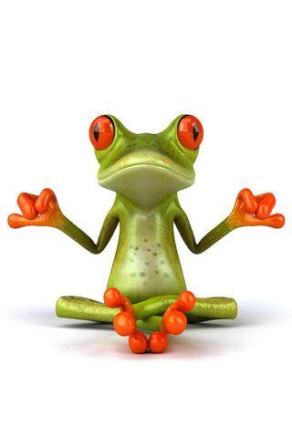 Frog In Yoga