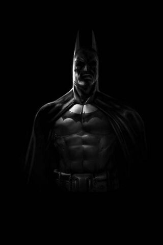 Batmanthe Dark-Night