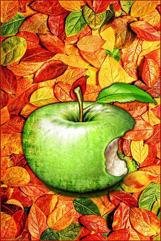 Leaves and Apple